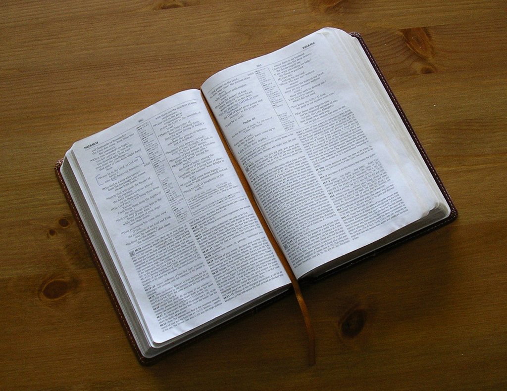 DailyBibleReadings
