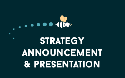 The Vision Project: Strategy Announcement and Presentation