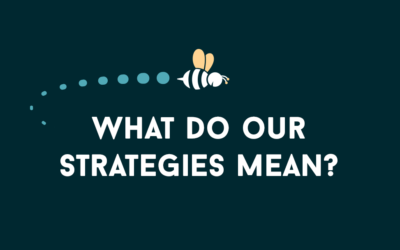 The Vision Project: What do our strategies mean?