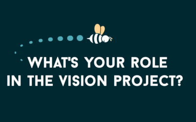 The Vision Project: What's Your Role?